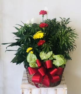 Planter Basket* ($105)