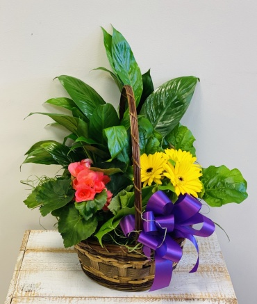 Blooming Basket Small