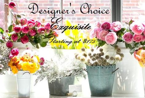 Designer\'s Choice - Exquisite