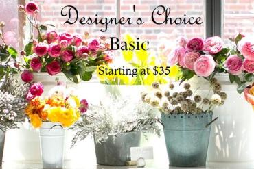 Designer\'s Choice*